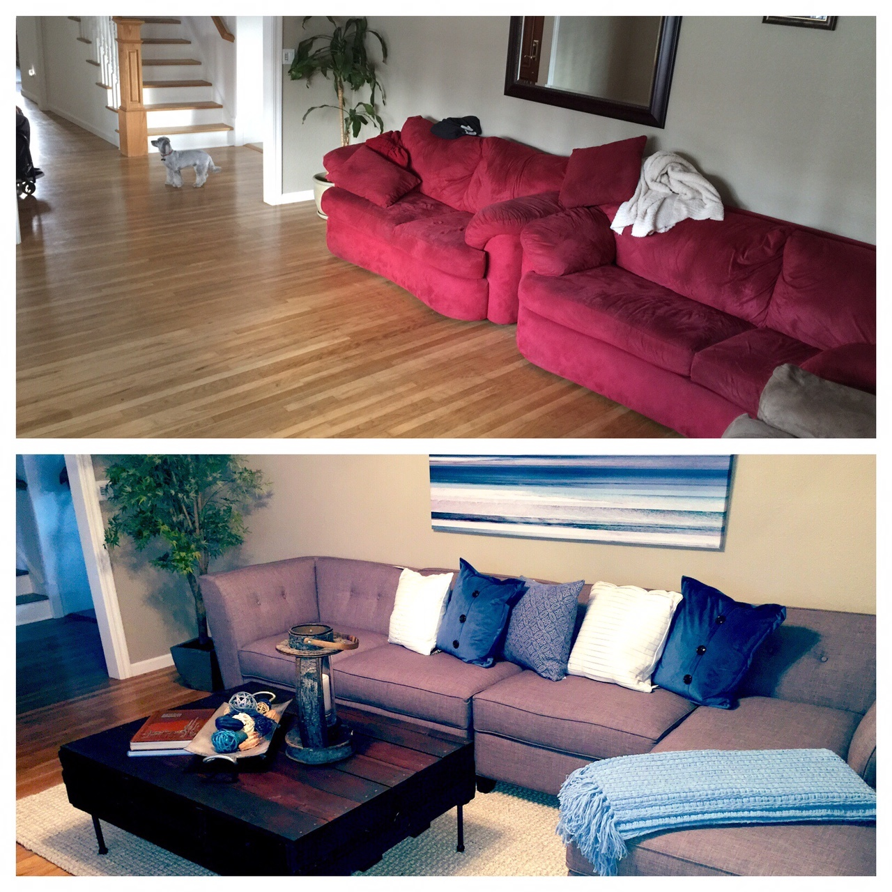 Before & After Interior Decorating